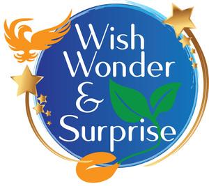 Mountain Phoenix Auction: Wish, Wonder & Surprise
