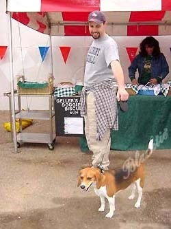 Cal, a 3-year-old beagle who belongs to Mike Romano, is another North Metro boarder.