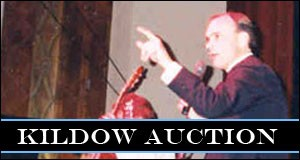 Kildow Auction